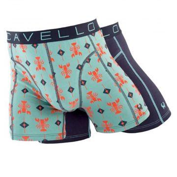 Cavello boxer 2 pièces | impression 20013